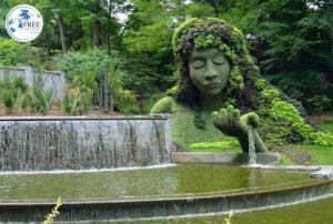 حديقة النباتات الوطنية تبليسي